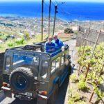 Amazing views on our 4x4 Safari tour in Câmara de Lobos